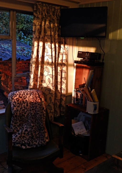 Dappled sunshine in the lounge